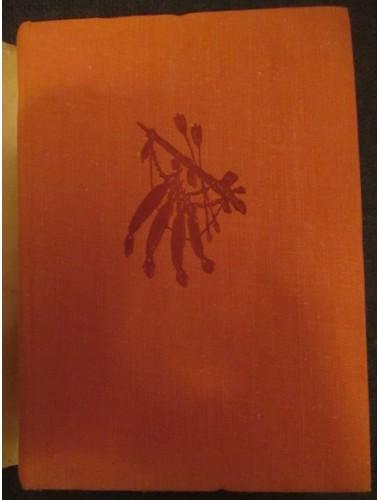 Песнь о Гайавате (1978)