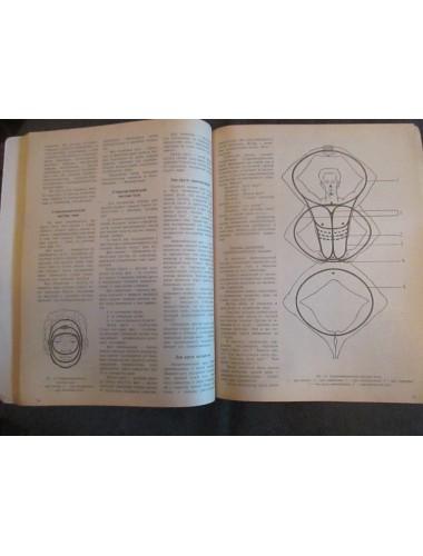 Древо целительства: Биоэнергосистемотерапия (1995)